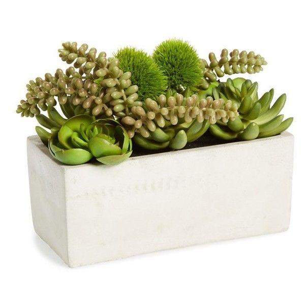 Sage & Co. Faux Succulent Garden In Cement Pot ($29) ❤ liked on Polyvore featuring home, outdoors, outdoor decor, plants, fillers, flowers, interior, green, green pot and rectangular pots