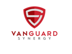 Vanguard Synergy Digital Media Marketing Group Is The Naperville Web Design Company For All Digital Marke Digital Media Marketing Web Design Web Design Company