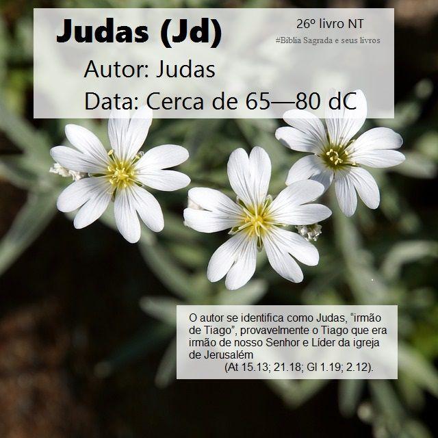 Biblia Sagrada E Seus Livros Judas Autor E Data Jd