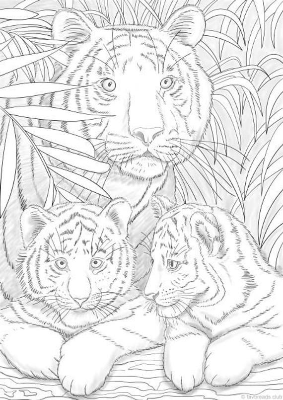 Tigers - Printable Adult Coloring Page from Favoreads (Coloring book pages for adults and kids, Coloring sheets, Coloring designs) #coloringsheets
