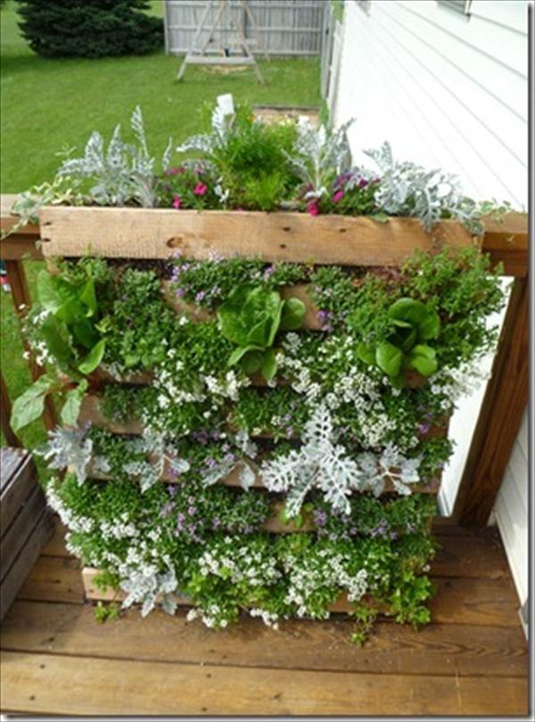 Innovative Diy Pallet Vertical Garden Ideas Orti Pallet 400 x 300