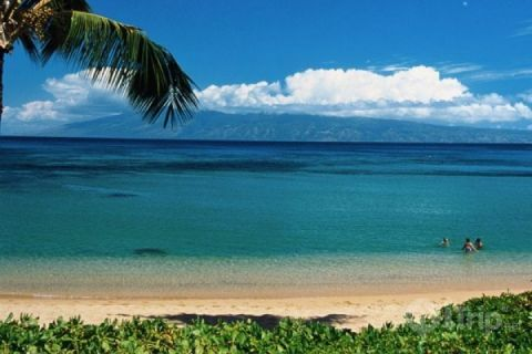 Napili Bay - Maui, Hawaii