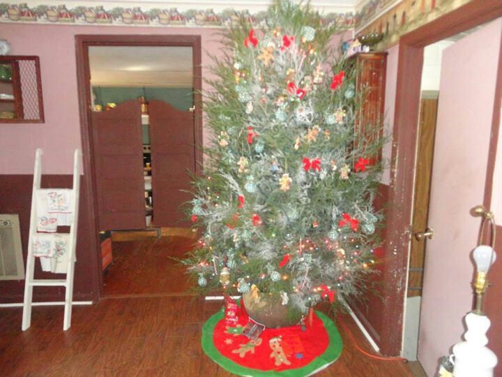 Our country Christmas tree used old cast iron kettle as our stand :)