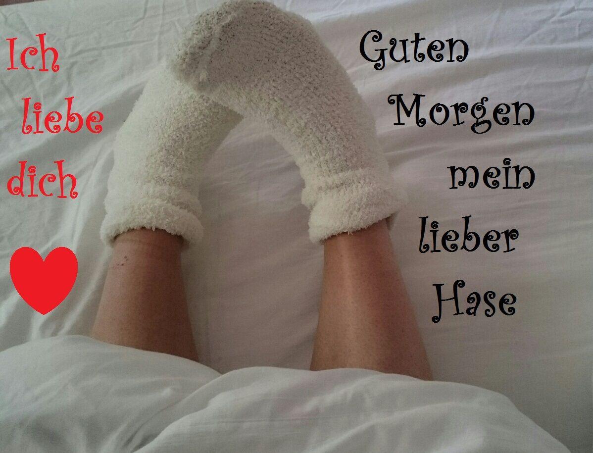 Guten Morgen Mein Geliebter Hasehast Du Gut Geschlafen