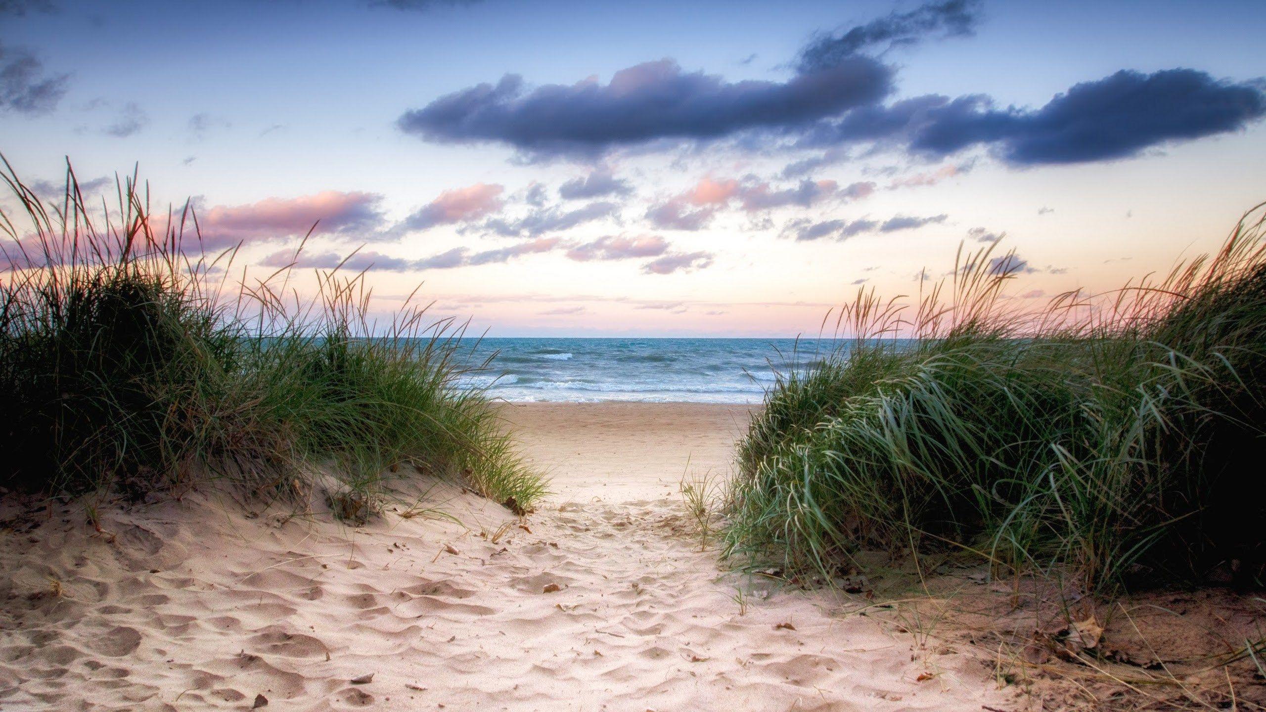Free screensaver beach Beach wallpaper