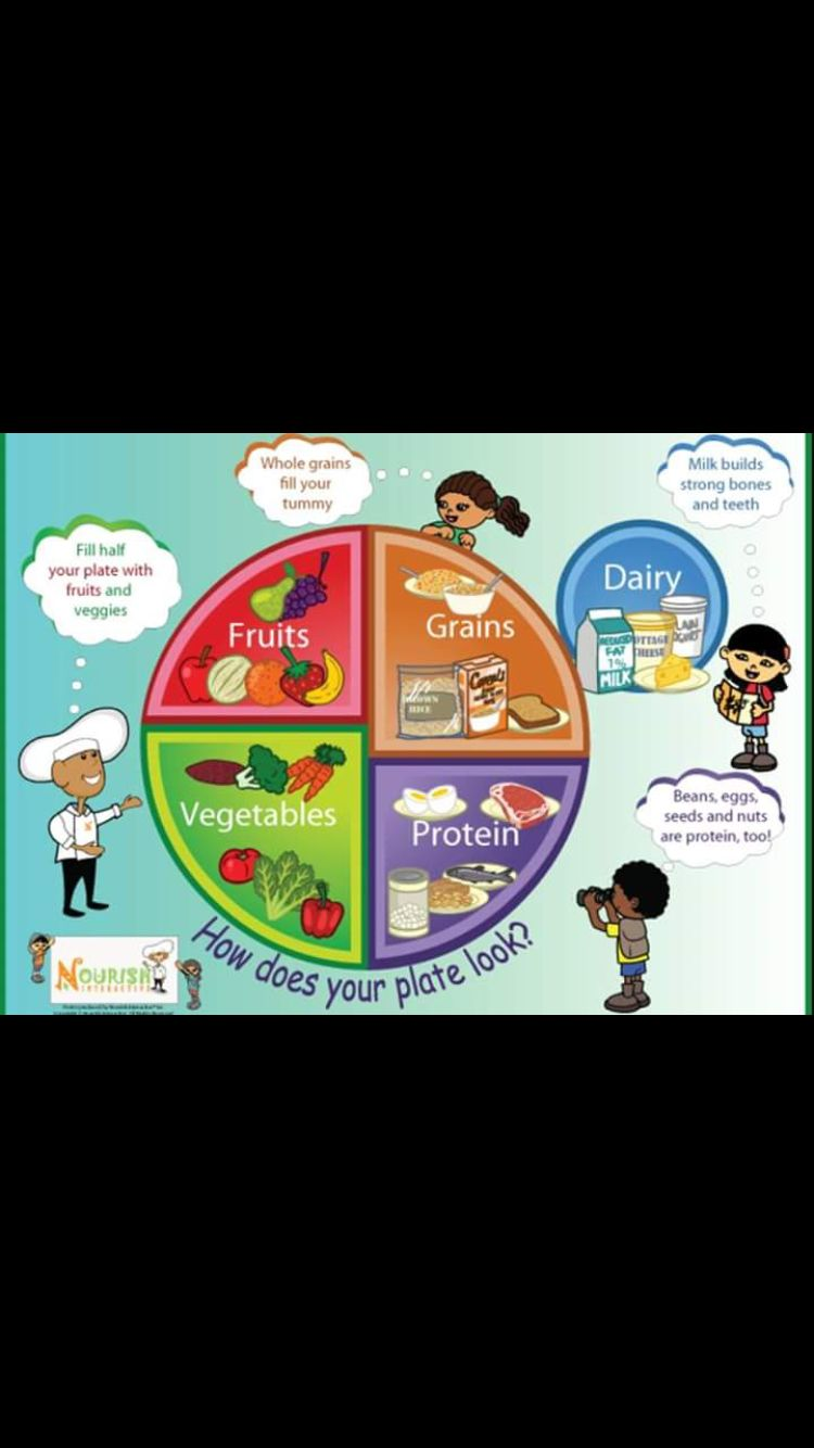 Pin by Stacey Lozano on Compass Preschool PE Food groups