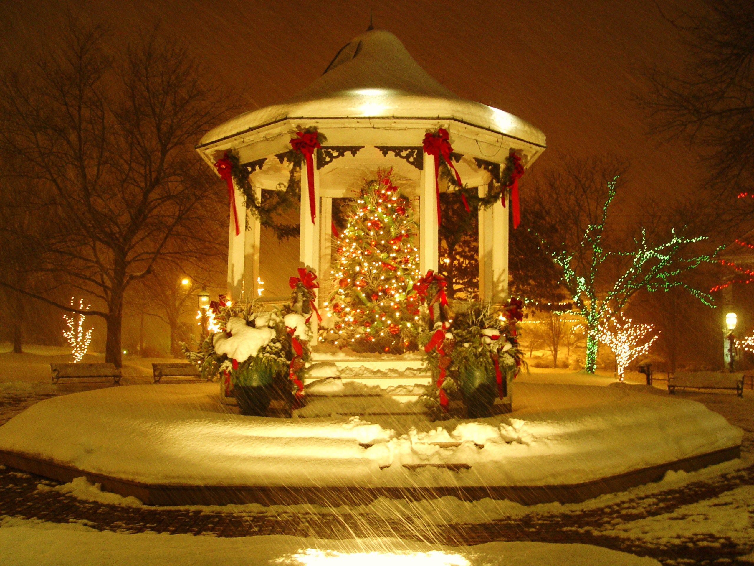Welcome To Paradeofgardens Com Hanging Christmas Lights Outdoor Christmas Decorations Christmas Lights