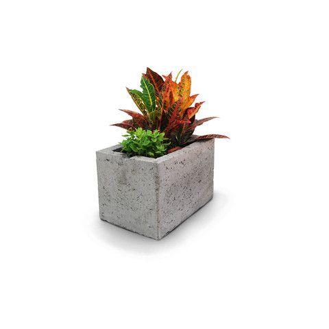almar maceta de concreto - natural | deco alameda | pinterest