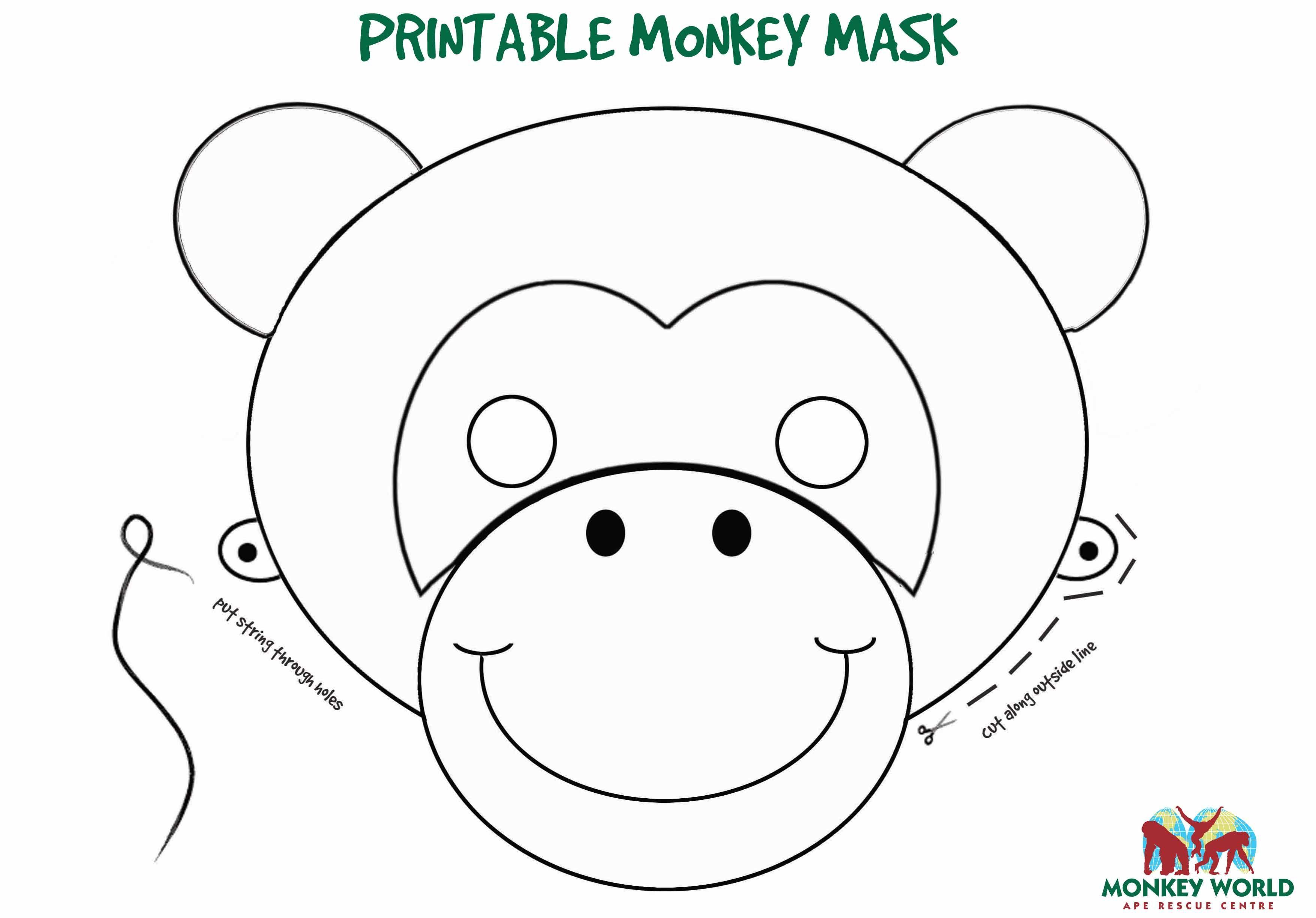 Monkey World Ape Rescue Centre | Kids parties | Pinterest