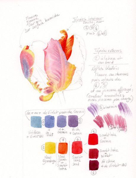 Petites Lecons En 2020 Tutoriels Peinture Aquarelle Tutoriels