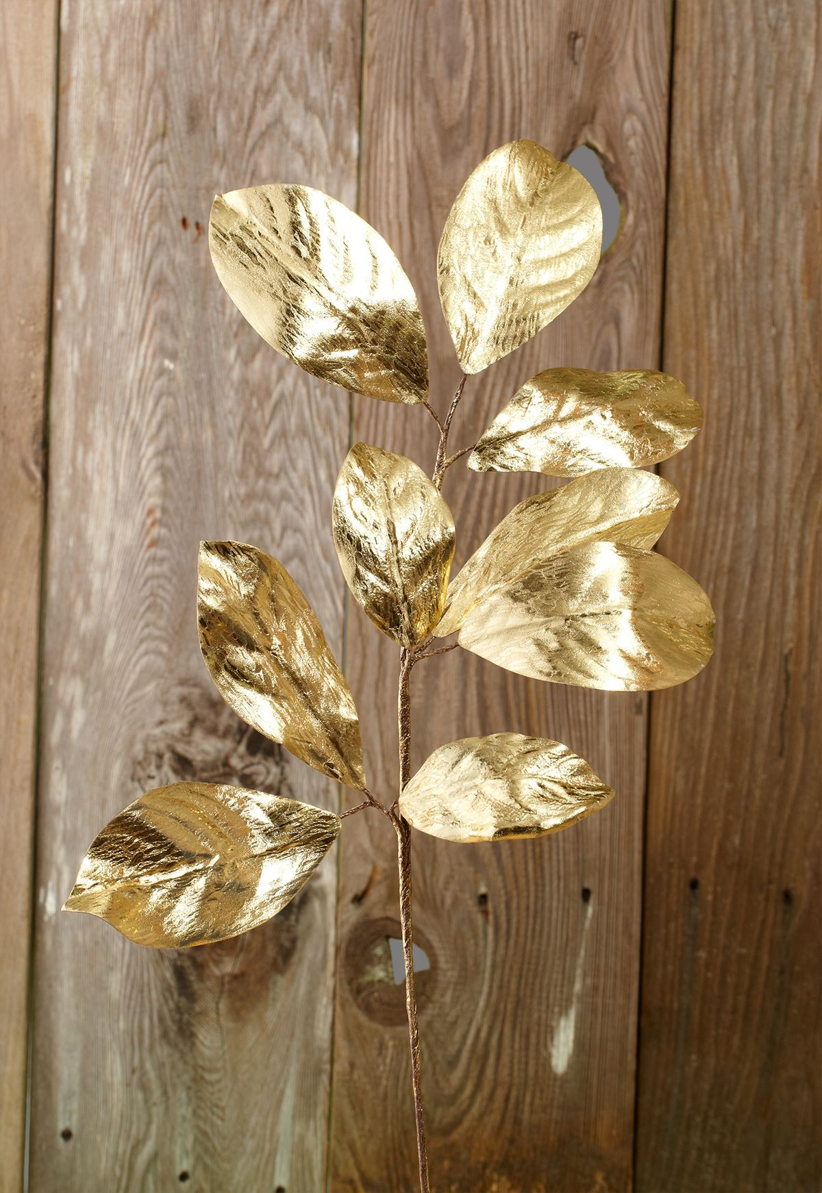 Magnolia Leaf Spray Gold You Can Spray Paint Your Own