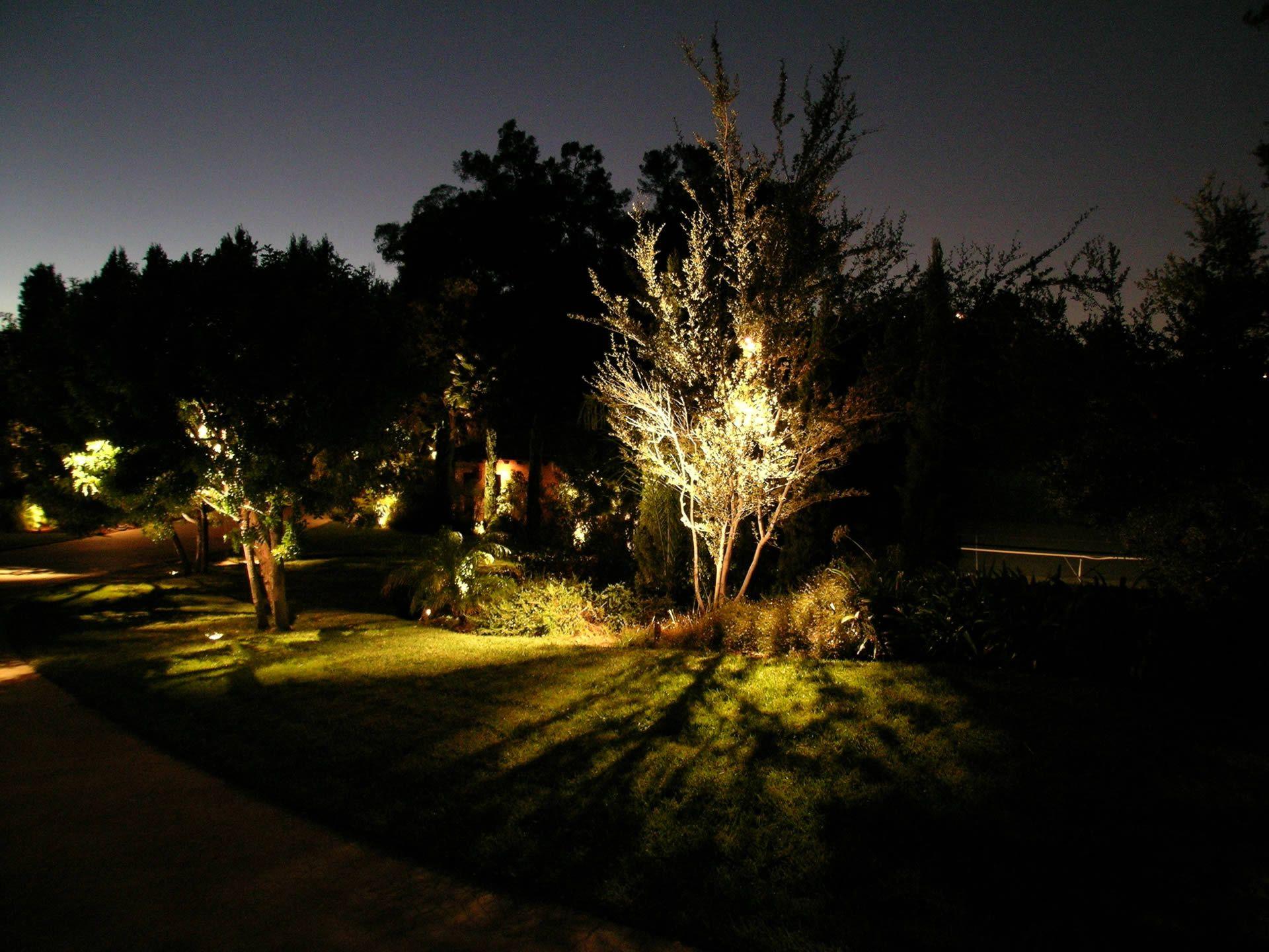 Featured Project Beverly Hills Landscape Lighting Led Landscape