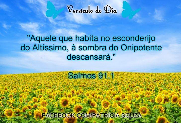Pastor 7 Salmo 91 Combatendo Em Oracao R R Soares Salmo 91