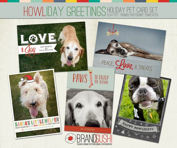 Holiday Card Collection Howliday Greetings Photoshop Templates