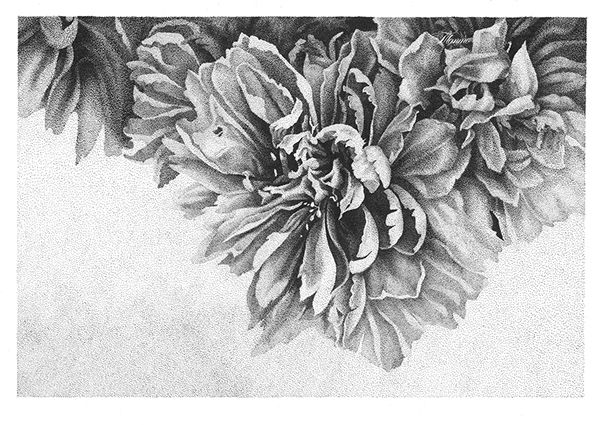 Peony | Pointillism by Ekaterina Tetto, via Behance
