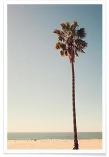 California Dreaming - Catherine McDonald - Premium Poster