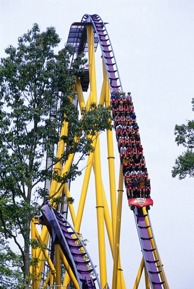 eb8493c53046f0bb42821d9b628fc576 - Busch Gardens Williamsburg Rides And Attractions