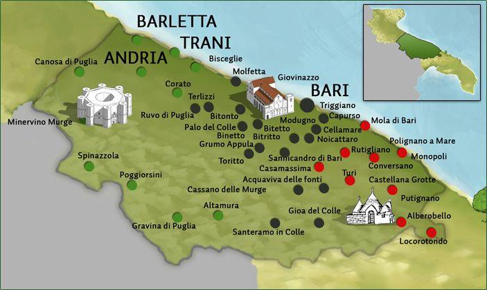 La denominazione olio di oliva extravergine terre di bari for Arredamenti bari e provincia