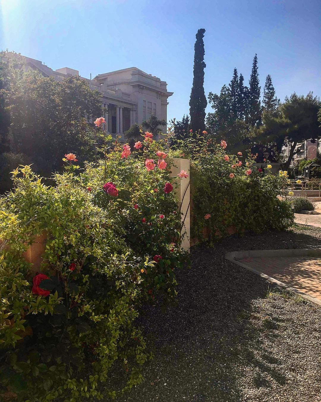 One of the best outdoor places to visit in #Athens is the #garden of ...