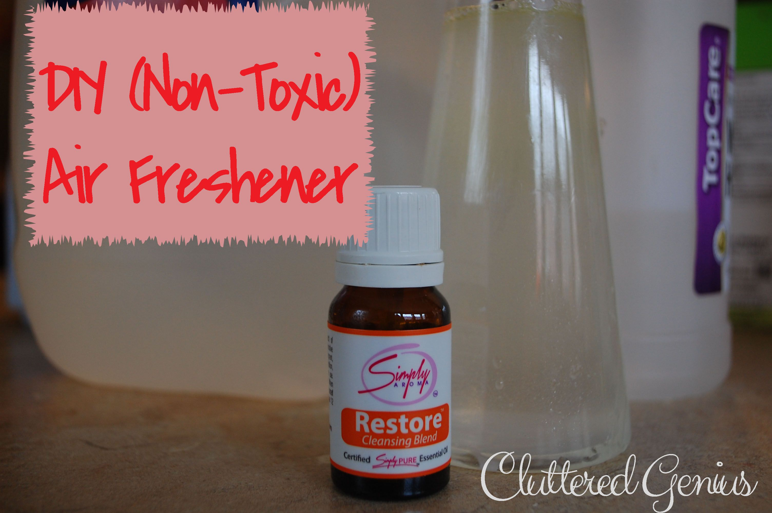 "DIY NonToxic Air Freshener with three simple ""ingredients"