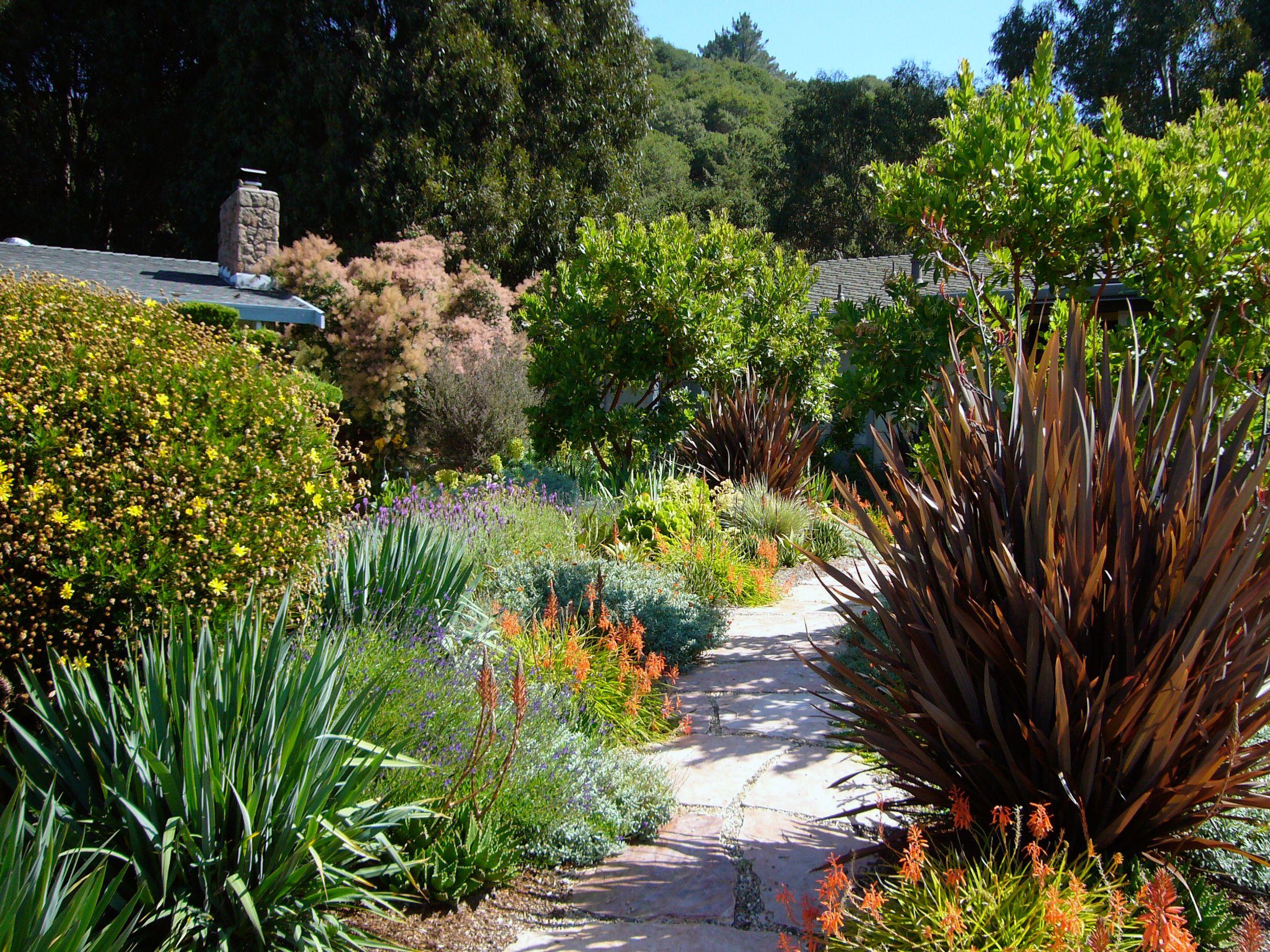 Blades Garden Design Garden Installation