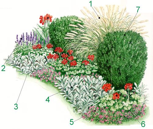 Photo of Pflegeleichter Garten, mit Pflanzen die Sonne bevorzugen