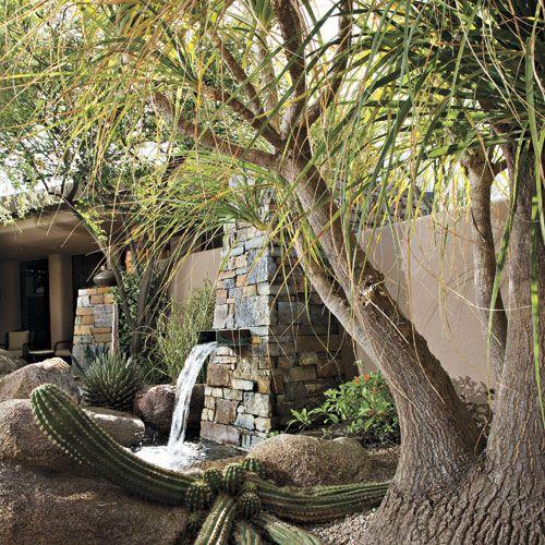 unusual phoenix home and garden. A Natural Canvas  Phoenix Home Garden Cactus Pinterest