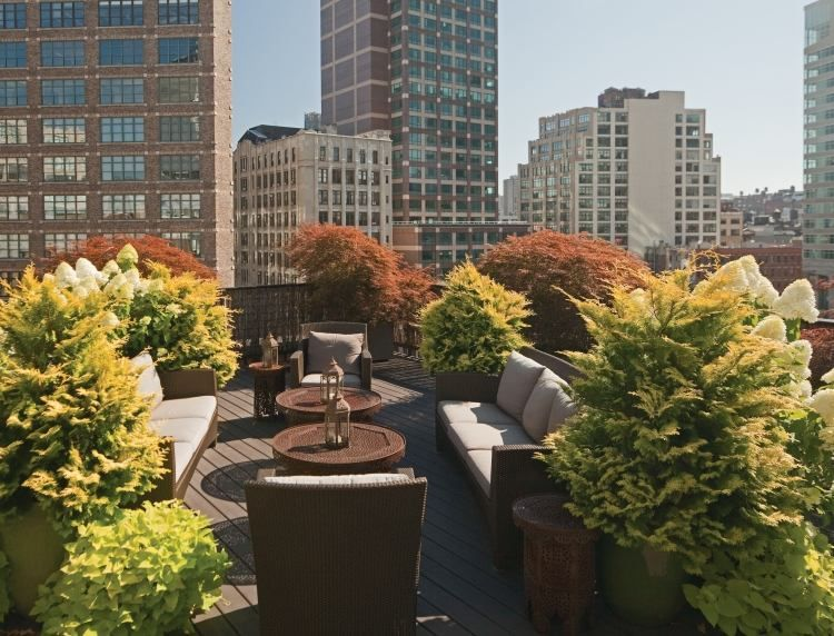 Sitzecke Auf Der Dachterrasse Mit Pflanzen Abschirmen | Dach ... Pflanzen Fur Dachbegrunung Dachgarten
