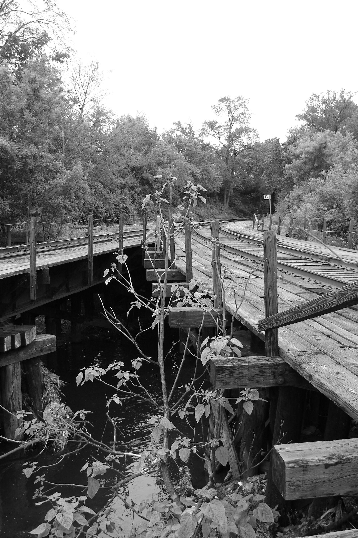 Wooden trestle. Rockford, Illinois