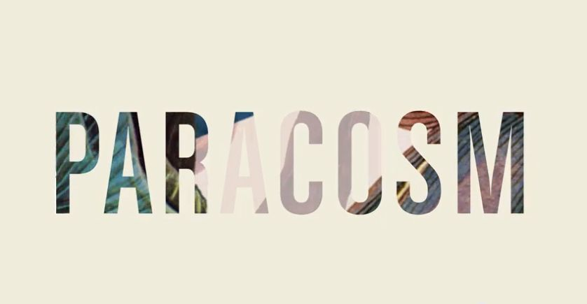 A paracosm is a detailed imaginary world created inside one's mind.