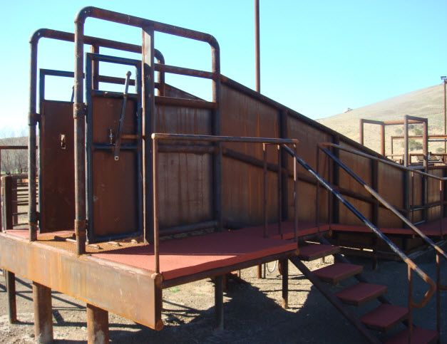 Cattle Squeeze Chute Cattle Corral Pinterest Cattle