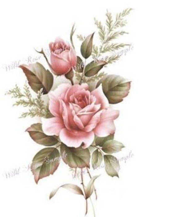 VinTaGe XL AmeRiCaN BeauTy RoSe ShaBby DeCALs ~FurNiTuRe SiZe~