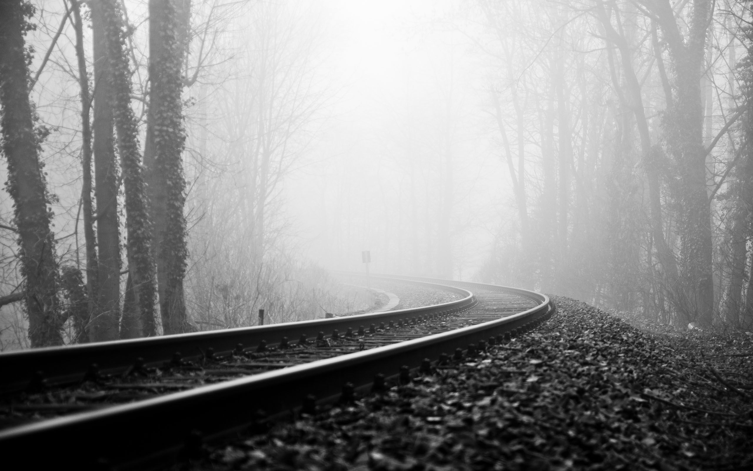 Black And White Photography Nature Wallpaper Hd Images 3 HD Wallpapers