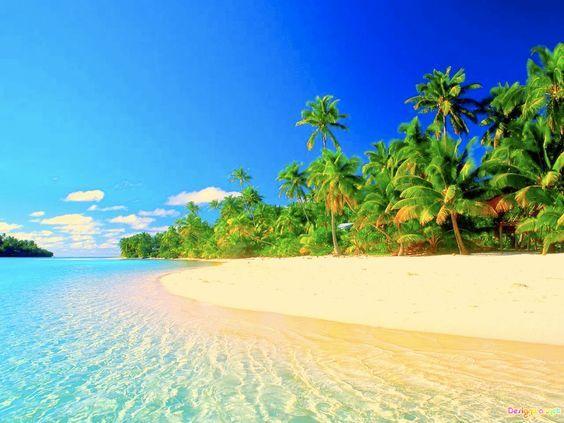 Tropical Paradise Beach Coast Sea Palm Trees Summer 2560x1600 ...