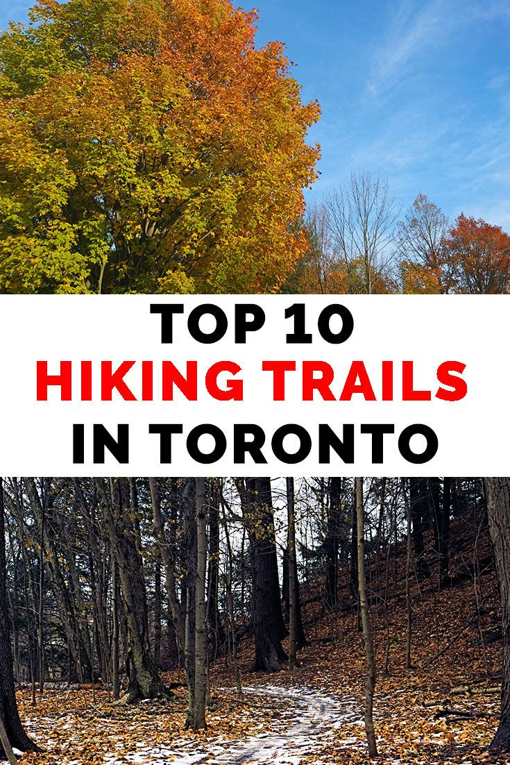 The Best Hiking Trails in Toronto, Canada / Ideas for Hiking in Toronto