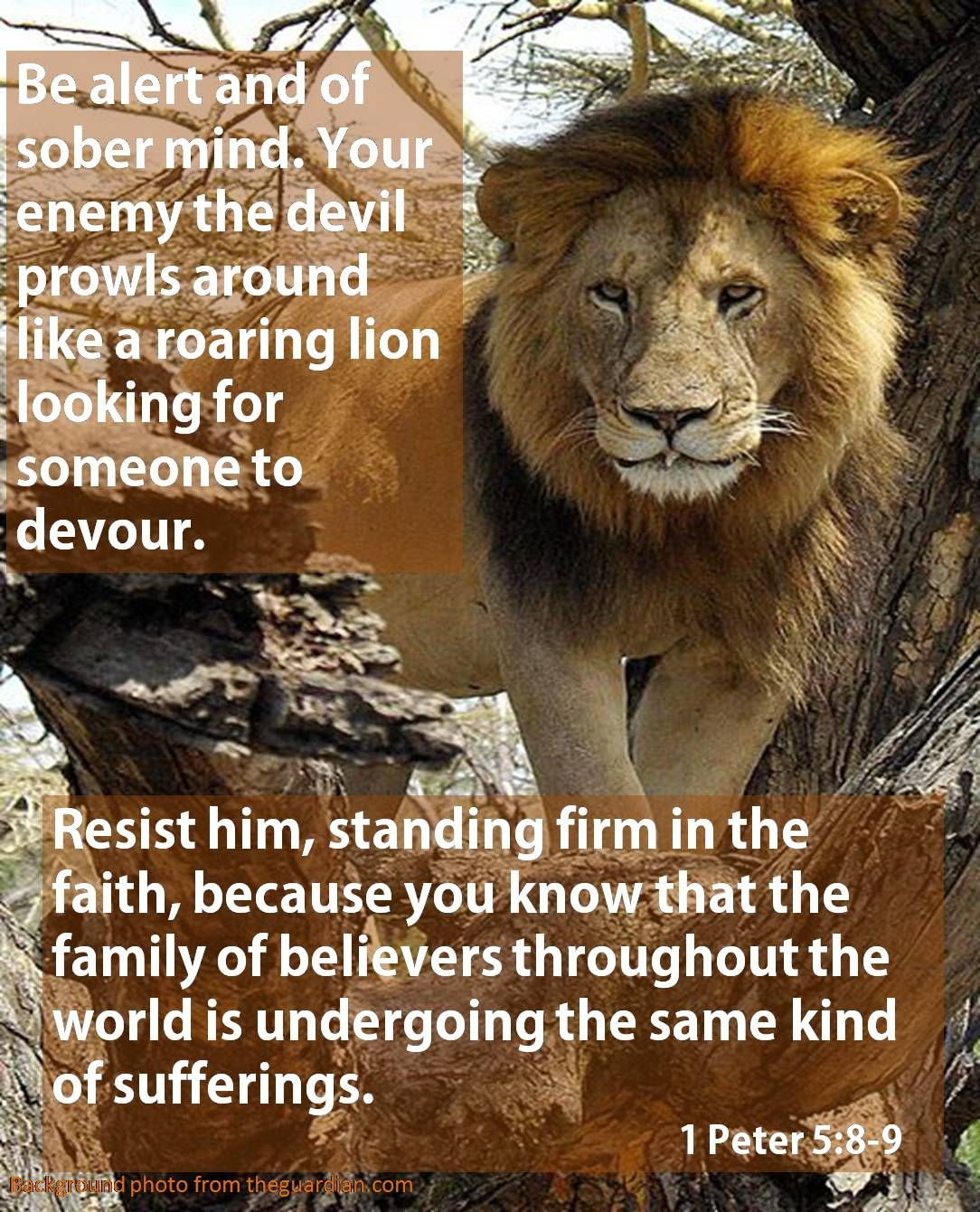 1 Peter 58 Keep your senses, be watchful! Your adversary