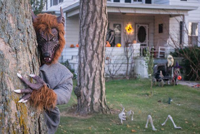 Werewolf prop on Halloween Forum Halloween - Universal Monsters - outdoor halloween ideas