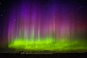 Minnesota, US The northern lights in the skies near the township of Kroschel Photograph: Mark Vancleave/AP