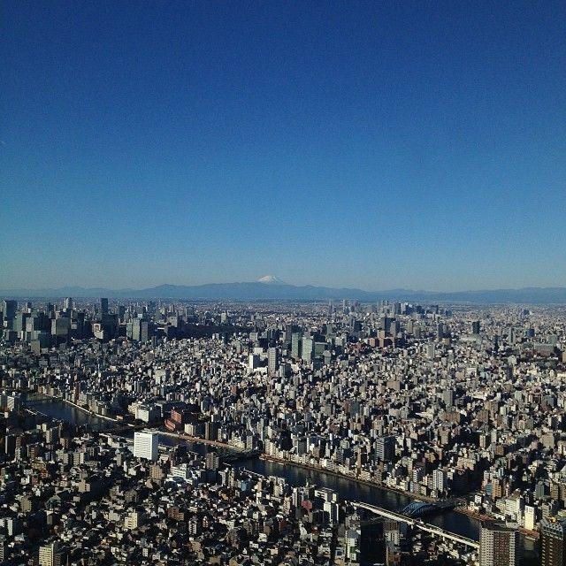 Tokio, una ciudad que nos fascina
