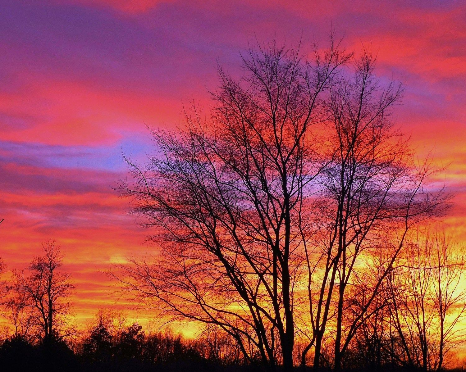 Winter Sunset Nature Photography Michigan Photography Sunset Winter Sunset Landscape Horizon Silhouette Red Sunset Red Sky At Night In 2020 Sunset Photography Nature Nature Photography Winter Sunset