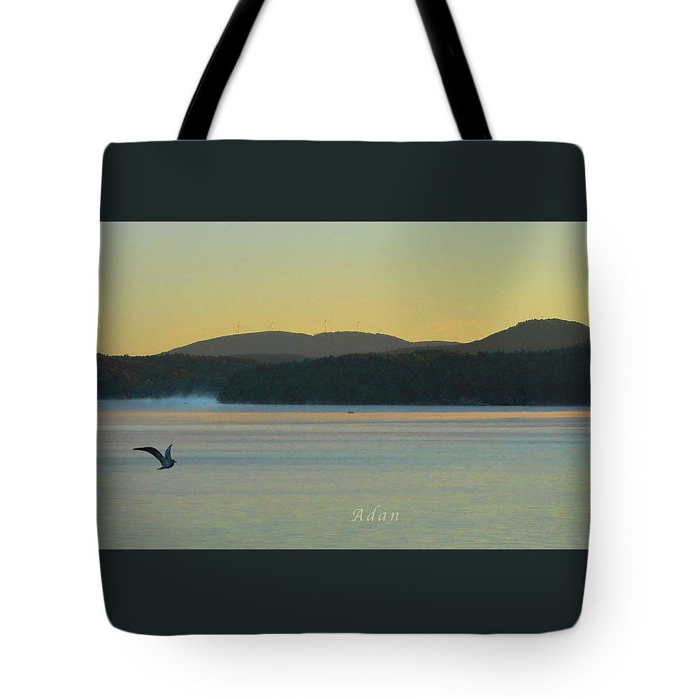 Tote Bag * Sunrise Over Malletts Bay Variations - Eight - Detail *   Original Digital Design Felipe Adan Lerma   #CarryOwnBag #VermontSunrise #birds #gifts