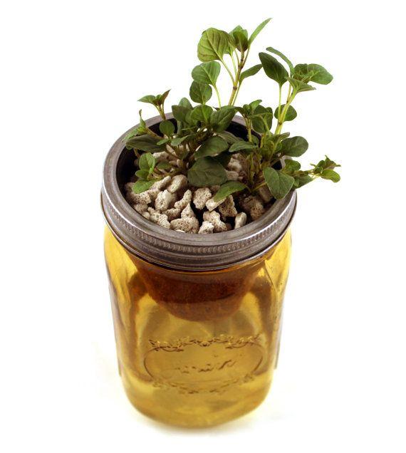 Herb Garden Kit Mason Jar Self Watering Planter With Oregano Mason Jars Pinterest Herb