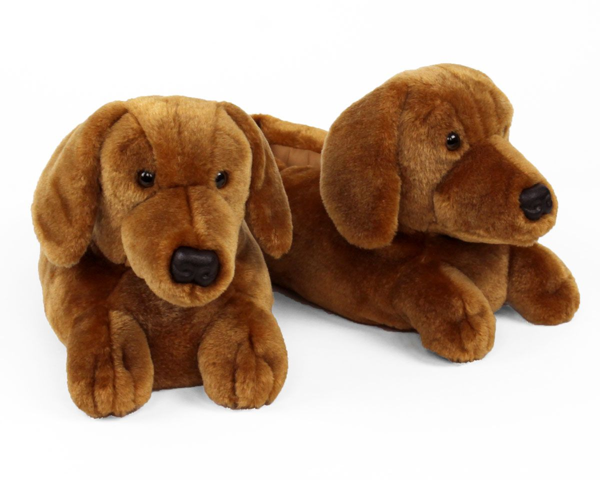 Dachshund Slippers Slippers Dachshund Cute Dogs Puppies