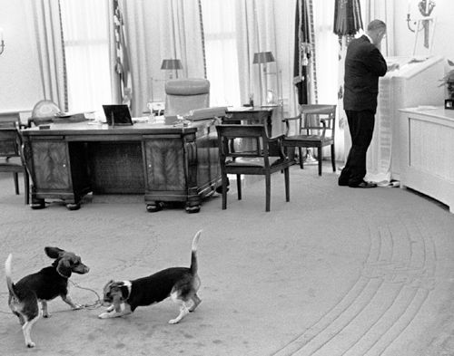 lbj oval office. LBJ And His Dogs.\u0027 He Was Widely Criticised For Handling However, As Would Lift Them By The Ears. Lbj Oval Office