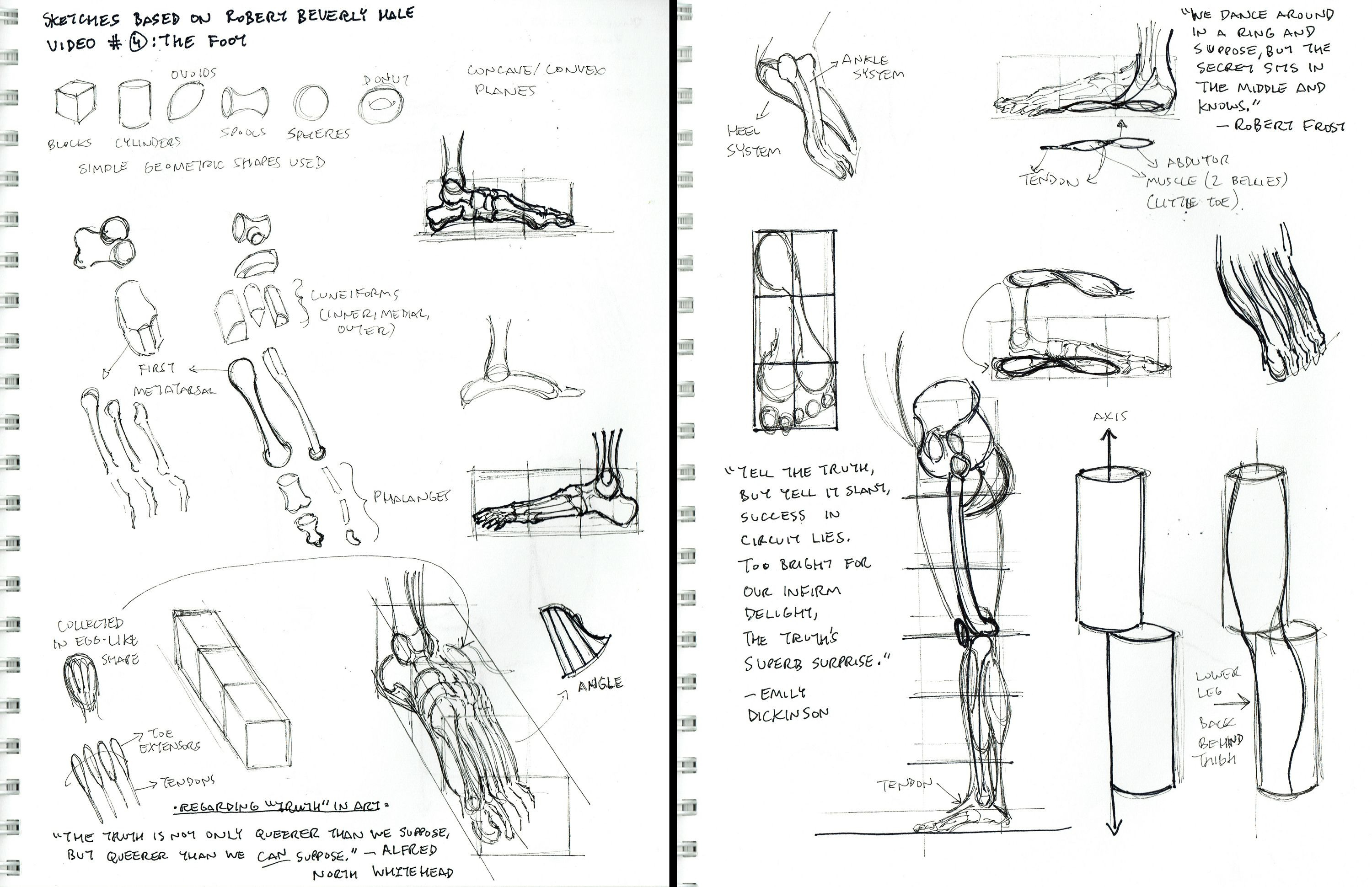 2015 Figure Drawing - Citrus College Sketchbook Homework: Notes and ...