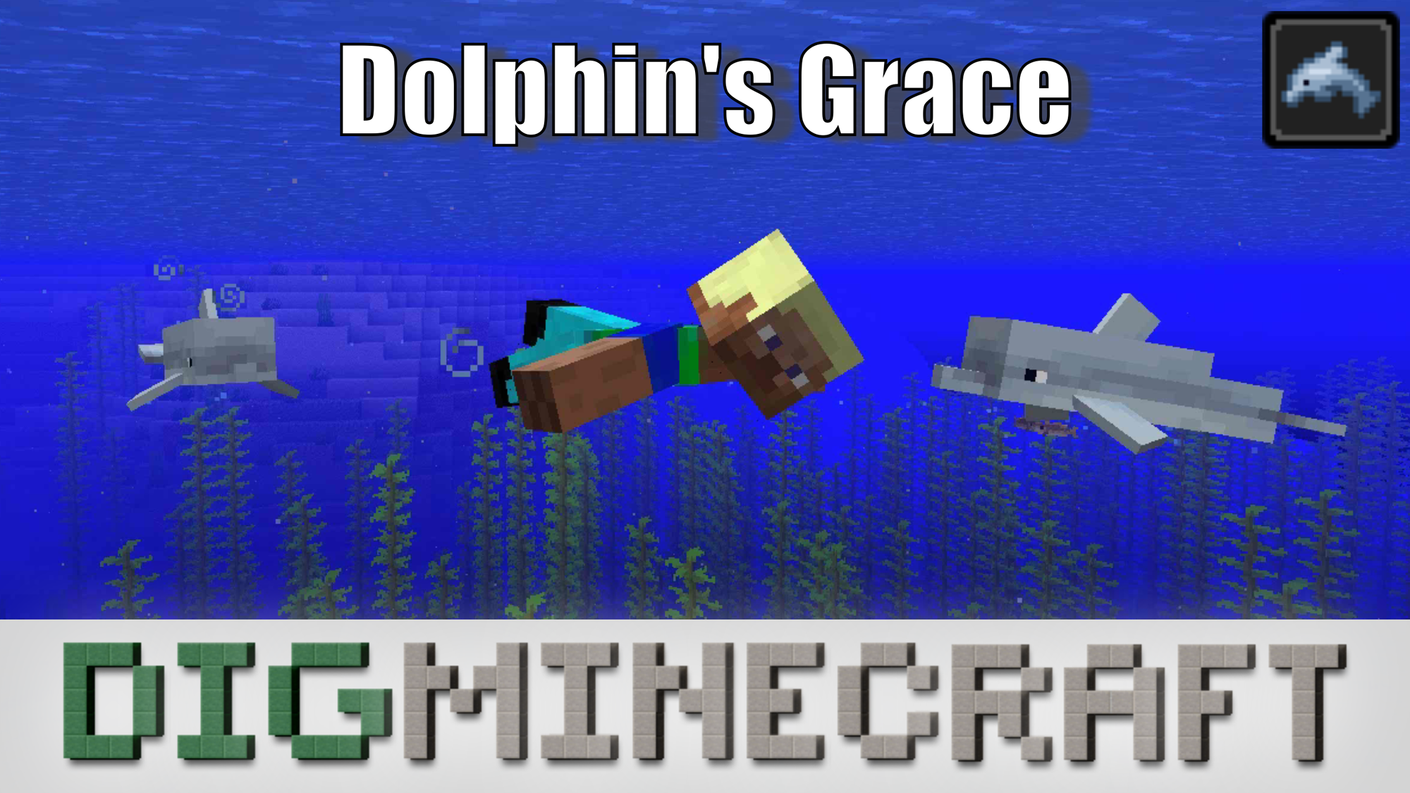 Learn all about the status effect called Dolphin's Grace in the