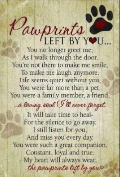 Pawprints on my heart
