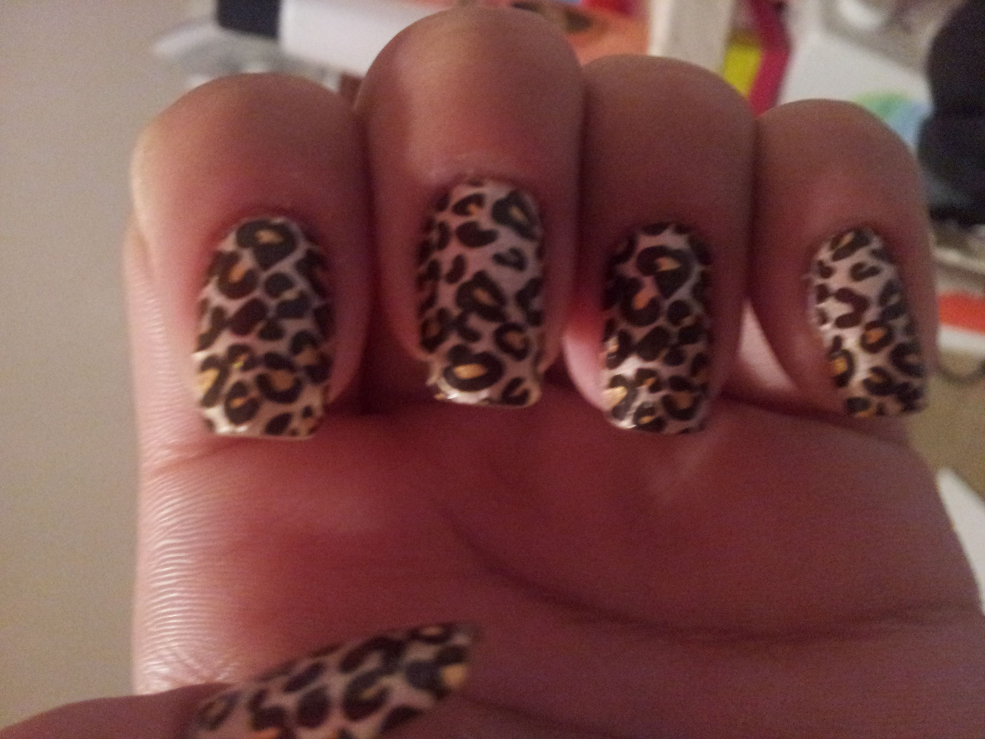 Kiss Stick-On strips in Cheetah. These stay on for much longer than ...