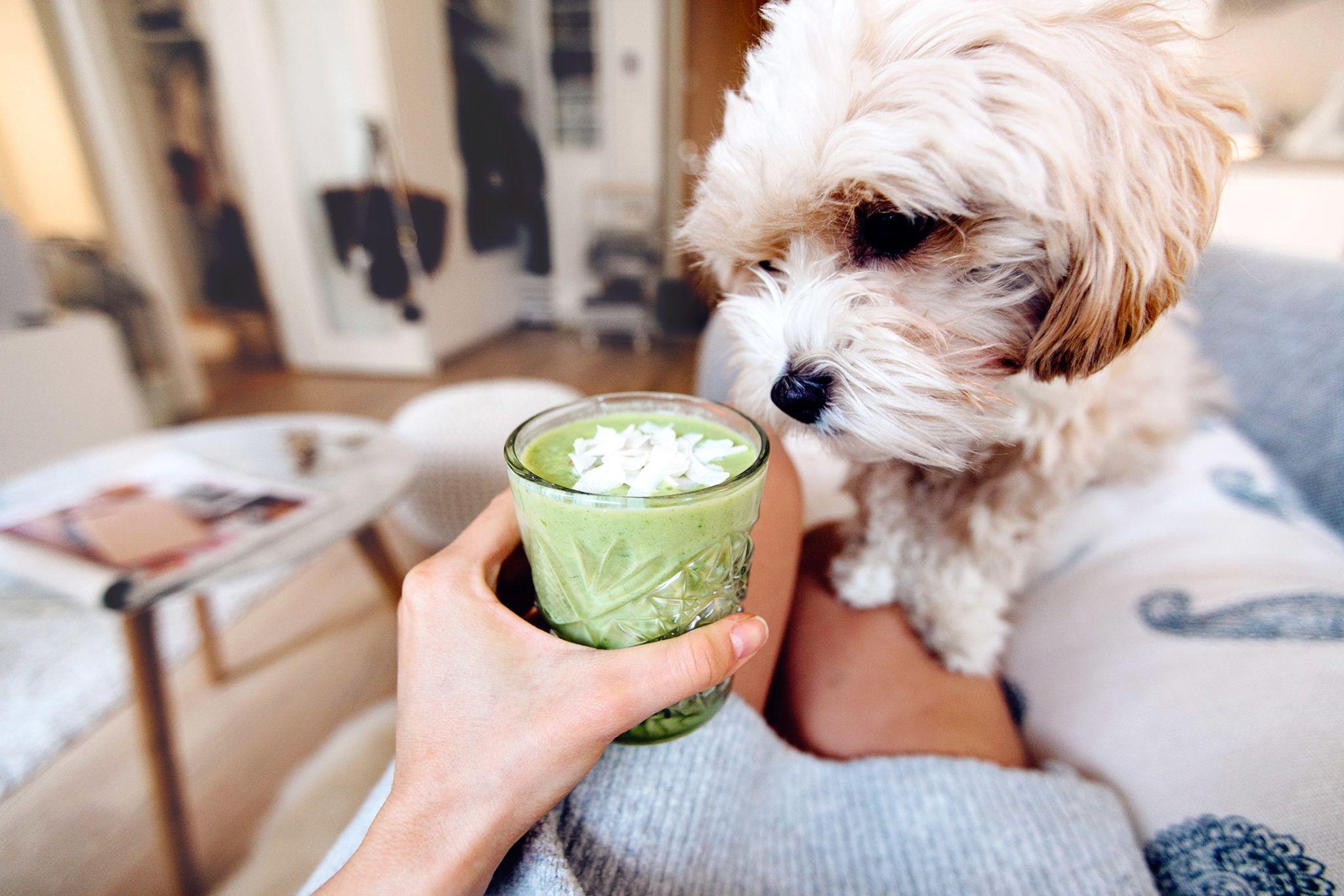 My favorite green smoothie - MariannanMariannan