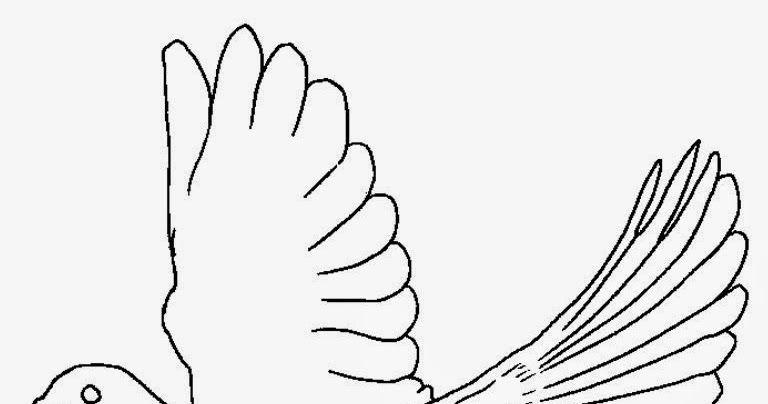 44 Gambar Burung Merpati Kolase Hd Terbaru Gambar Burung Gambar Kolase